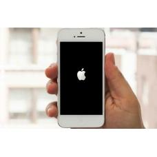 iPhone завис на яблоке, что делать? Пошаговые действия