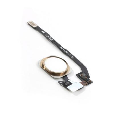 Кнопка Home с сенсором отпечатков Touch id и шлейфом iPhone 5S оригинал Gold
