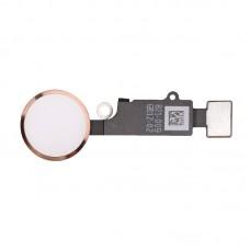 Шлейф кнопки Hоme для iPhone 7 Розовое золото (Rose gold)
