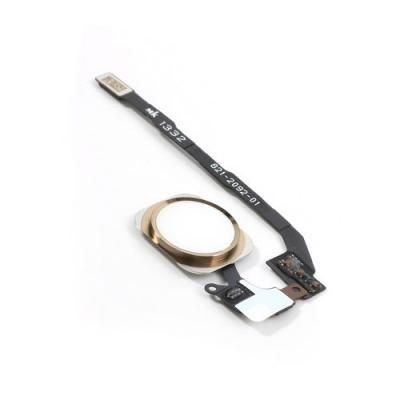 Кнопка Хоум в сборе с шлейфом для iPhone SE, Золотая